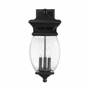 Best Reviews Hultgren 3-Light LED Outdoor Sconce By Alcott Hill