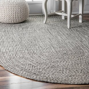Kulpmont Hand Braided Gray Indoor Outdoor Area Rug
