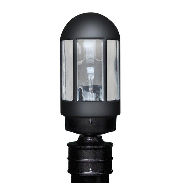 Donnie 1-Light Blown Glass Lantern Head by Latitude Run