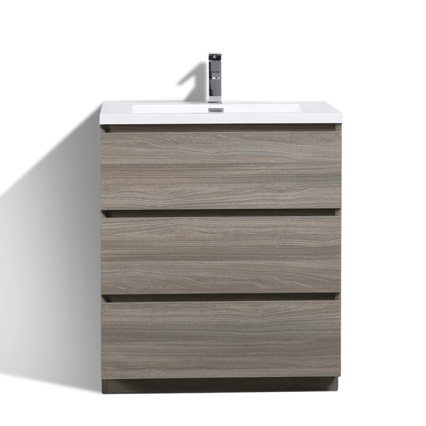 Riker 29 Single Bathroom Vanity Set by Orren Ellis