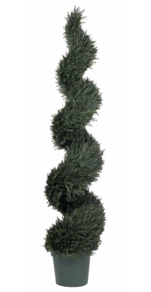 UV Pond Floor Cypress Topiary in Pot by Darby Home Co