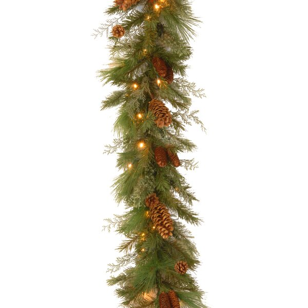 Decorative Pre-Lit White Pine Garland by National Tree Co.