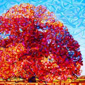 Buddha Tree Graphic Art by Prestige Art Studios