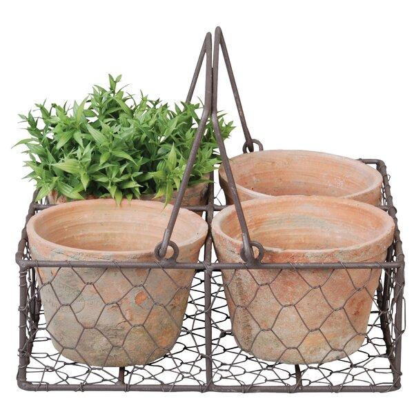 4-Piece Terracotta Pot Planter Set in Metal Basket by EsschertDesign