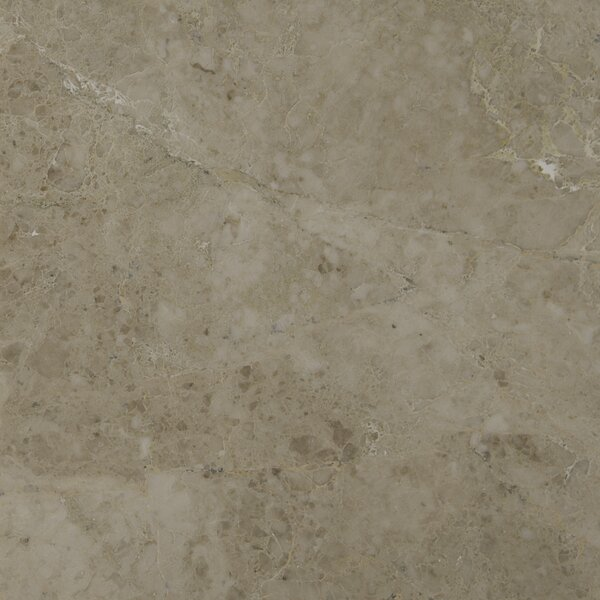 18 x 18 Marble Field Tile in Crema Cappuccino by MSI