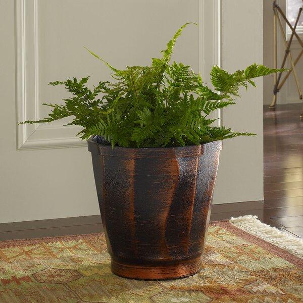 PoliVaz Copperworks Resin Pot Planter & Reviews