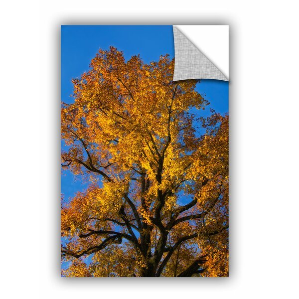 Cora Niele Golden Tree Wall Decal by ArtWall