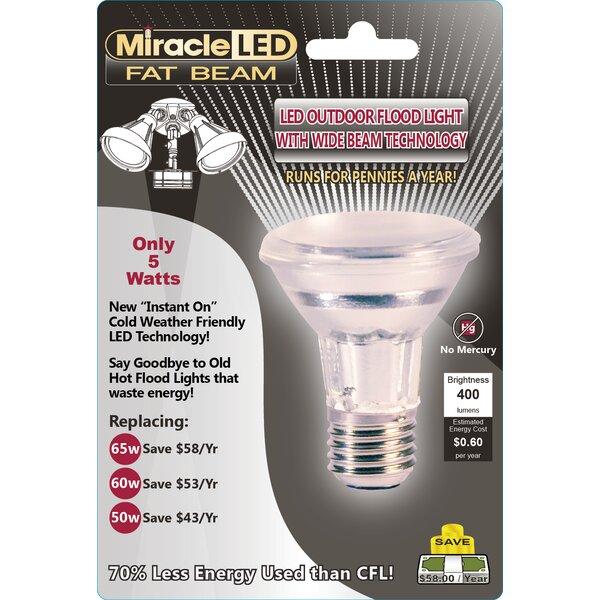 5W E26/Medium (Standard) LED Light Bulb (Set of 2) by Miracle LED