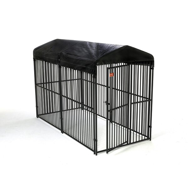 European Style Yard Kennel by Jewett Cameron