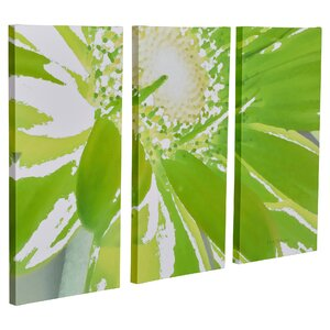 Gerber Time IV 3 Piece Painting Print on Wrapped Canvas Set by Brayden Studio