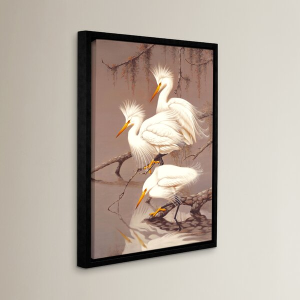 Great White Herons Framed Photographic Print on Canvas by Bay Isle Home