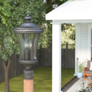 Check Prices Bronzewood 1-Light Lantern Head By Darby Home Co