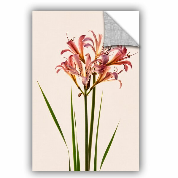 Fleeting Flowers 1 Wall Decal by Zipcode Design