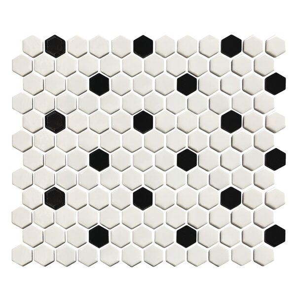 Value Series 1 x 1 Porcelain Mosaic Tile in White/Black by WS Tiles