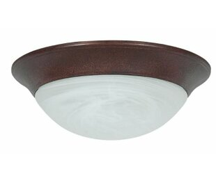 Reviews Kirtley Twist Faux Alabaster Outdoor Flush Mount By Winston Porter