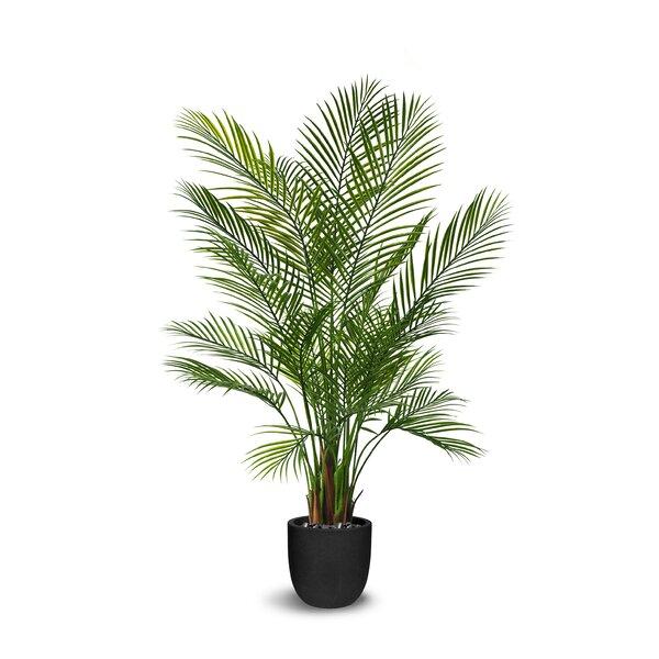 Areca Floor Palm Tree in Pot by Bayou Breeze