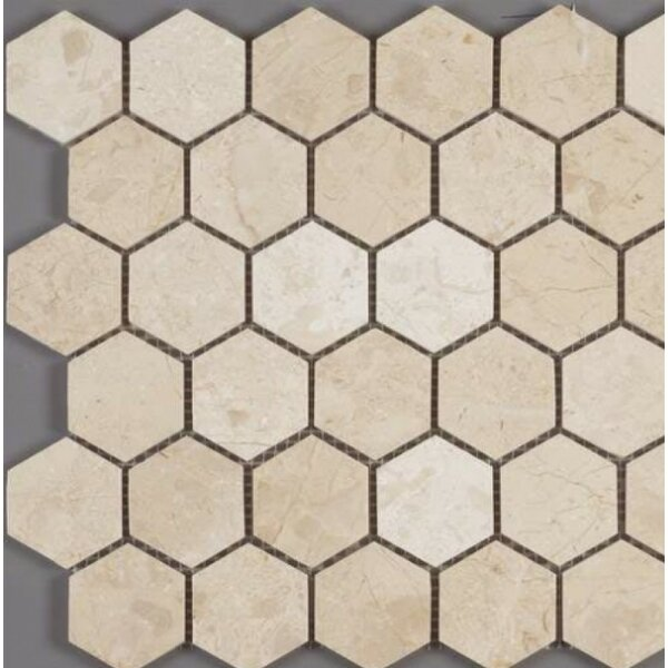 Honeycomb Hex Polished 2 x 2 Mosaic Tile in Crema Nouva by Ephesus Stones