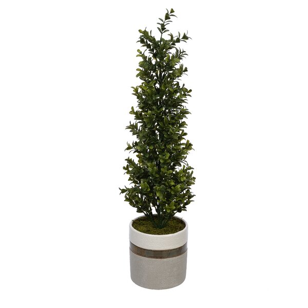 Artificial Desktop Boxwood Topiary in Pot by George Oliver