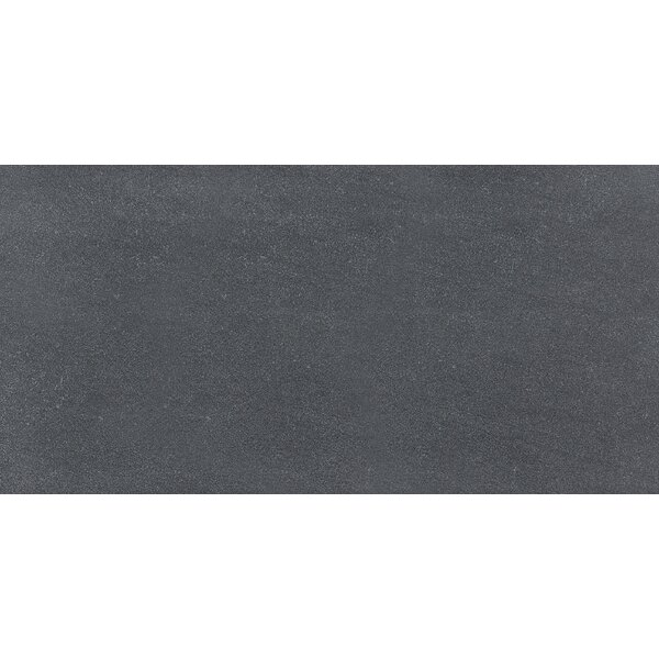Nouveau 12 x 24 Porcelain Field Tile in Charcoal by Parvatile
