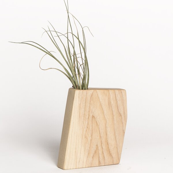 Wyatt Jr. Air Plant Holder Wood Pot Planter by Boyce Studio