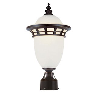 Reviews Towry Lantern Head By Fleur De Lis Living