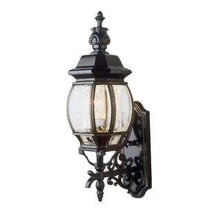 Compare & Buy Talon 3-Light Outdoor Sconce By Astoria Grand