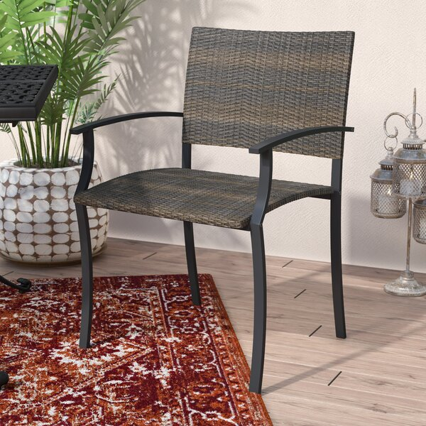 Apeldoorn Patio Dining Chair (Set of 2) by World Menagerie