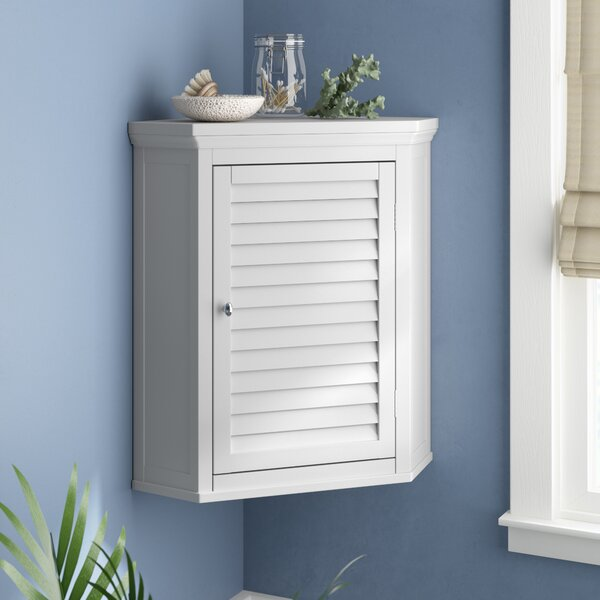Broadview Park 22.5 W x 24 H Wall Mounted Cabinet