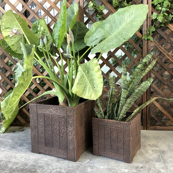 Spicer Wood Grain Cube 2-Piece Planter Box Set by Union Rustic