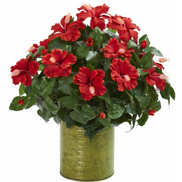 Artificial Hibiscus Centerpiece in Metal Planter by Charlton Home