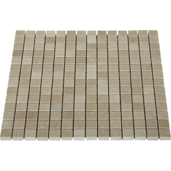 0.8 x 0.8 Marble Mosaic Tile in Crema Marfil by Splashback Tile