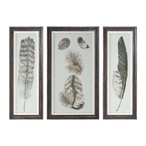 Feather Study Prints 3 Piece Framed Graphic Art Set by Brayden Studio