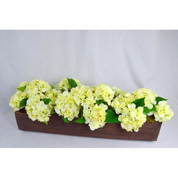 Exotic Hydrangea in Hand Carved Log by T&C Floral Company