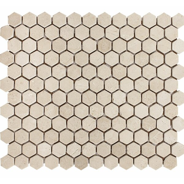 Crema Marfil Tumbled Hexagon 1 x 1 Stone Mosaic Tile by Parvatile