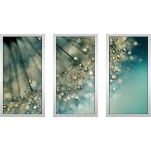 Indigo Sparkles by Sharon Johnstone 3 Piece Framed Photographic Print Set by Picture Perfect International