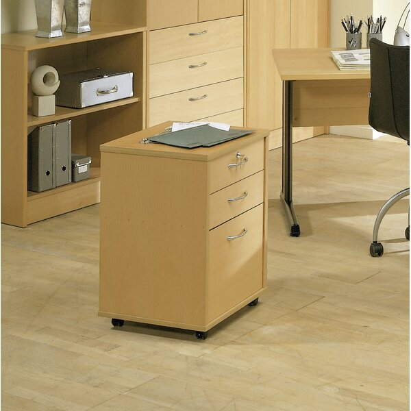 Ellzey 3-Drawer Mobile Vertical Filing Cabinet by Rebrilliant