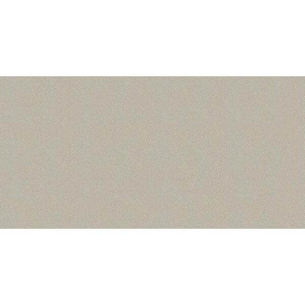 Element 12 x 24 Porcelain Field Tile in Matte Argent by Walkon Tile