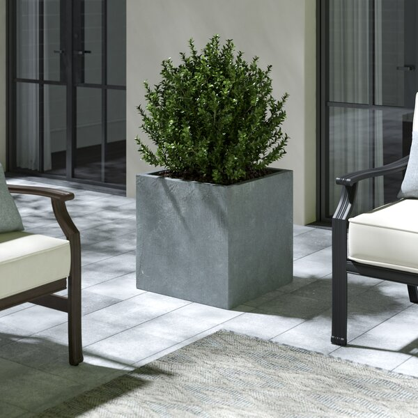 Shallowater Modern Concrete Pot Planter by Greyleigh