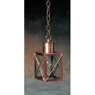 Bargain 200 Series 1-Light Outdoor Hanging Lantern By Brass Traditions