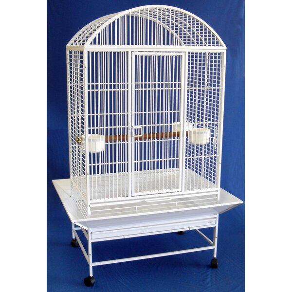 Wide Dome Top Parrot Bird Cage by YML