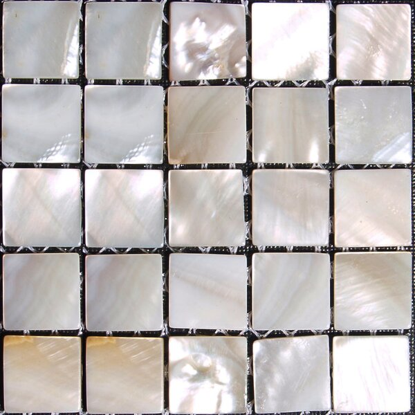 Authentic 0.625 x 0.625 Seashell Mosaic Tile in Natural by Matrix-Z
