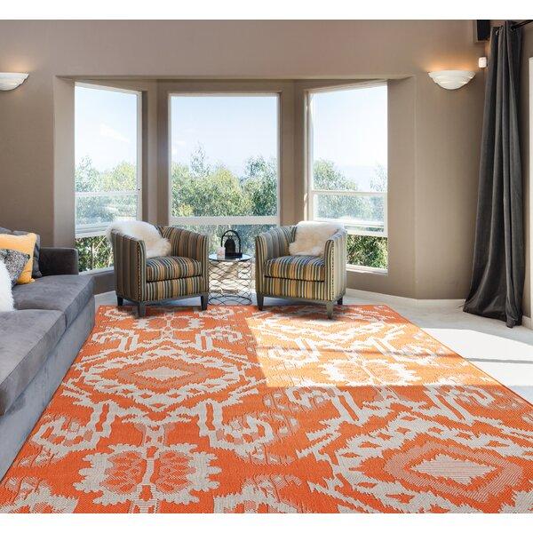 Barth Orange Indoor/Outdoor Area Rug