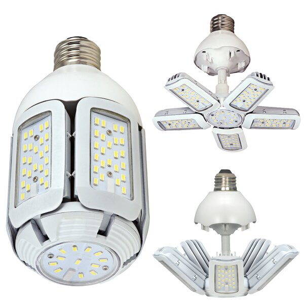 200W Equivalent E26 LED Specialty Light Bulb (Set of 6) by Satco