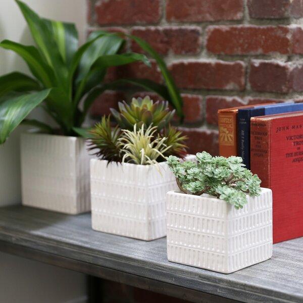 Reale Square 3 Piece Ceramic Pot Planter Set by Bungalow Rose