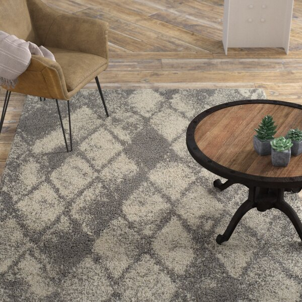 Milagro Gray Area Rug by Williston Forge