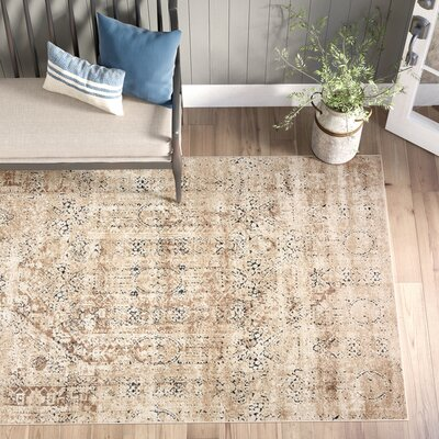 5 X 8 Cotton Area Rugs You Ll Love In 2020 Wayfair