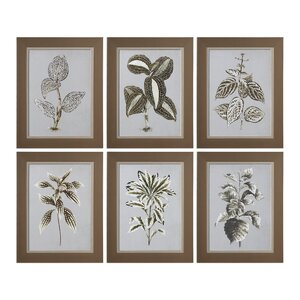 'Variegated Plant' 6 Piece Framed Graphic Art Set by Gracie Oaks