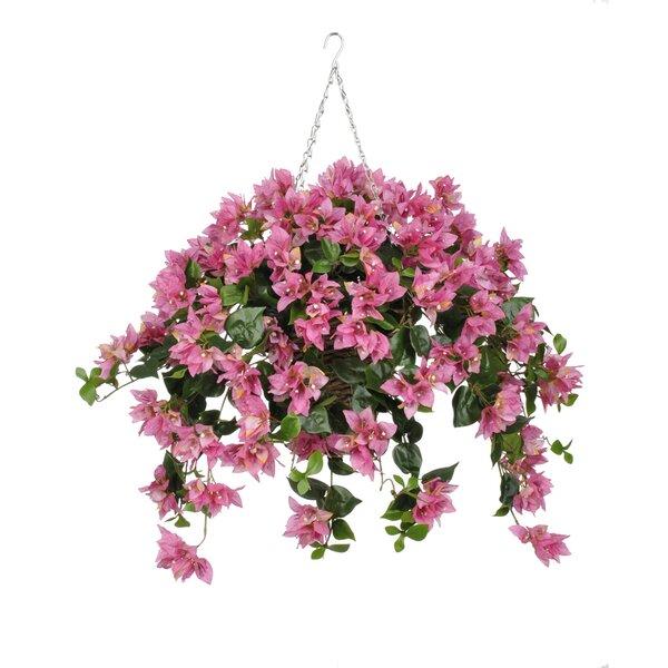 house of hampton faux bougainvillea trailing hanging flowering plant