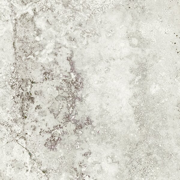 Pietra Roma 18 x 18 Porcelain Field Tile in Snow by Tesoro