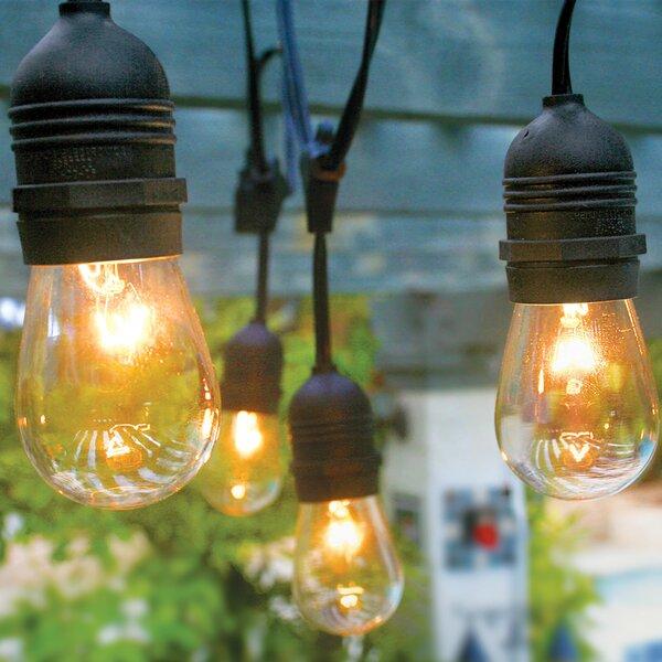 10-Light 21 ft. Globe String Light by The Paper Lantern Store